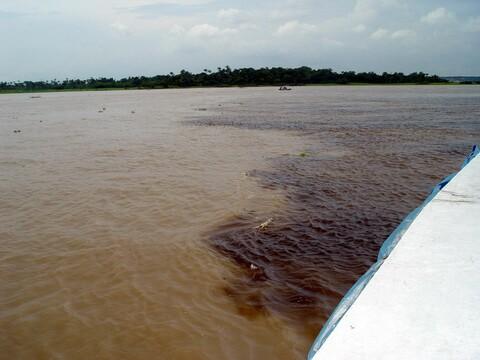 Que resulta no Amazonas
