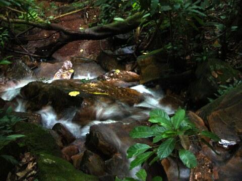 Mais Cachoeiras do MT